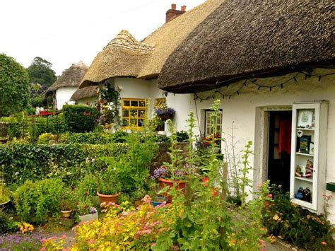 putdownthepotato adare cottages co limerick ireland by