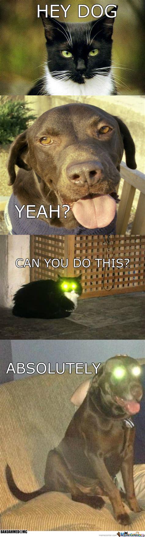 Laser Cat Meme - cat dog laser eyes by bakoahmed meme center