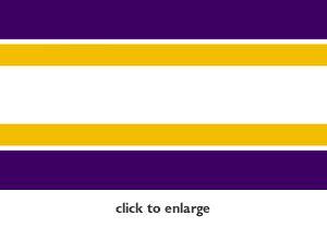 vikings colors minnesota vikings football team color wallpaper border