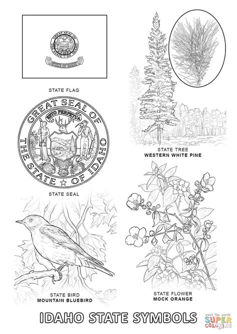 idaho state symbols coloring page free printable