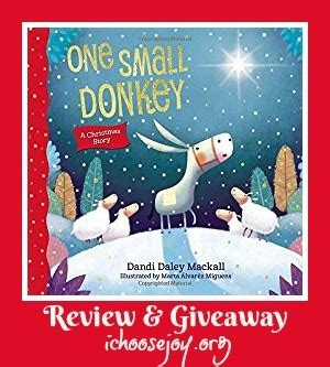 Small Christmas Giveaways - book reviews archives i choose joy