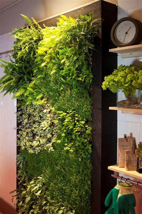 imagenes de jardines verticales caseros jard 237 n vertical interior para cocina alicante forestal