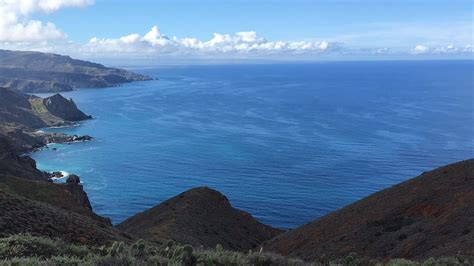boat ride to catalina island you say it s your birthday take a free boat ride to