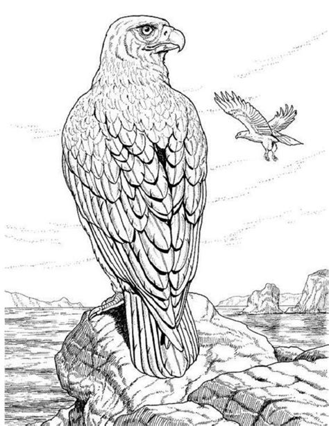 realistic coloring pages for adults realistic animal coloring pages for adults coloring kids