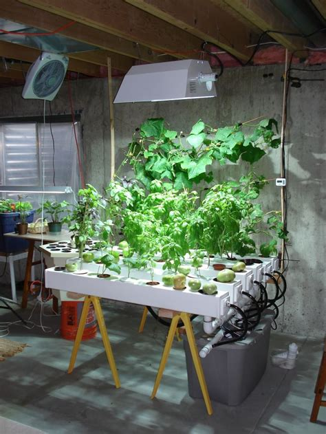 177 Best Hydroponic Gardening Images On Pinterest Indoor Hydroponic Vegetable Gardening
