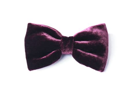 bow tie for plum velvet bow tie purple plum gift