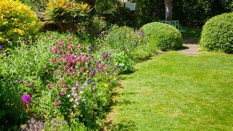 garten stauden stauden pflanzen worauf sie achten sollten