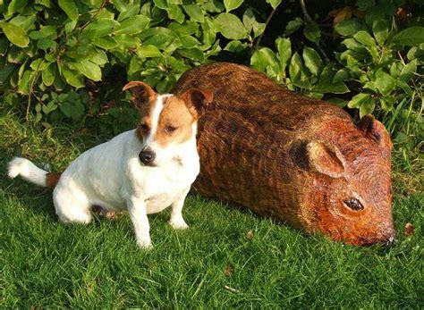 Garden Animals Wooden Mouse Childrens Garden Seat Garden Sculpture