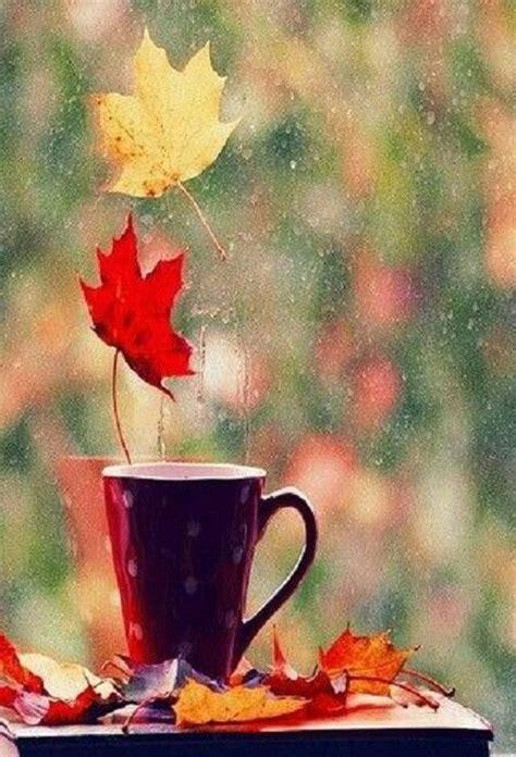 let it rain coffee 0743212045 1000 ideas about rain and coffee on rain the rain and rainy days