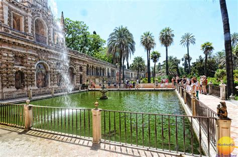 Alcazar Palace of Seville & Podcast   Wows all the way