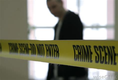 What Are The Different Types Of Forensic Psychology Courses