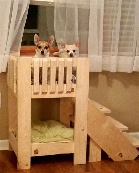 dog bunk bed handcrafted dog bunk bed w stairs unfinished pine quality