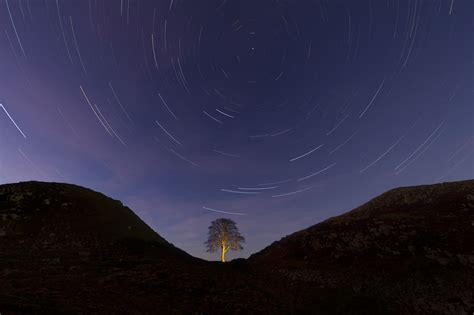 sycamore gap a dci mystery the dci mysteries volume 2 pictures europe s sky park
