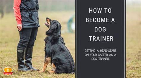 dog trainer  definitive guide