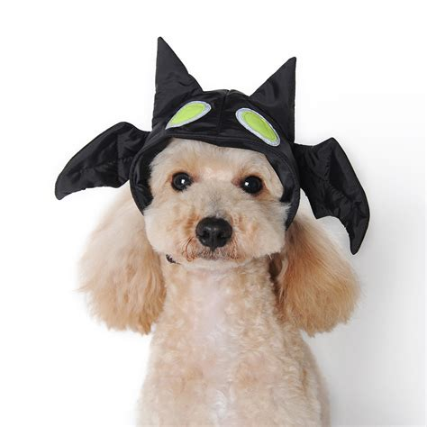 puppies with hats bat hat by dogo with same day shipping baxterboo