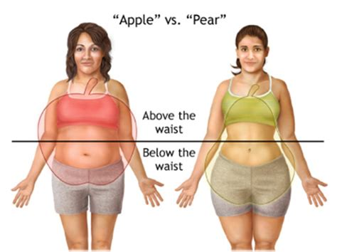 lose fat   waist legs  hips