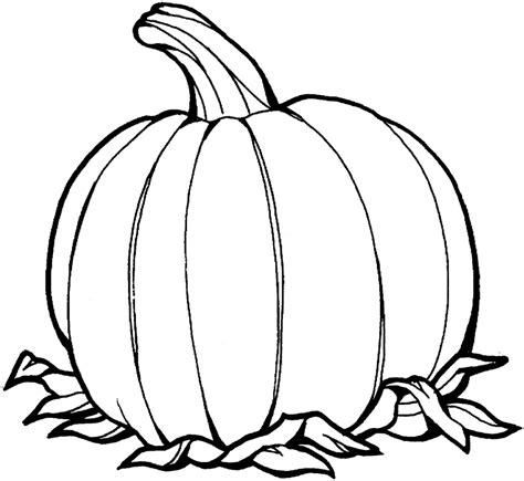 cartoon pumpkin coloring pages best pumpkin outline printable 22941 clipartion com