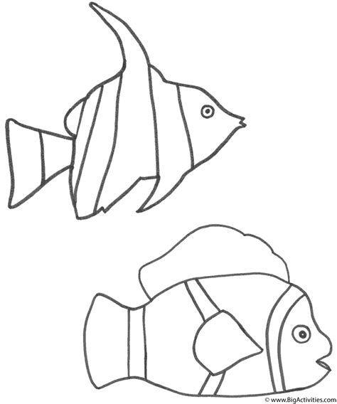 clown fish coloring pages printable angel fish and clown fish coloring page fish