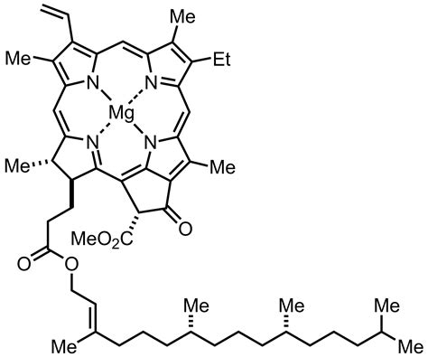 chlorophyll diagram synthesis of chlorophyll a by robert b 1960