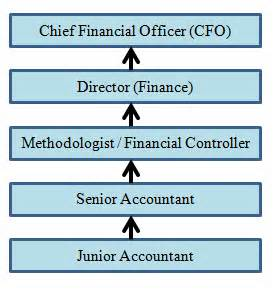 Chartered Accountant Plus Mba Salary by Career As A Chartered Accountant Ca Edugroomers
