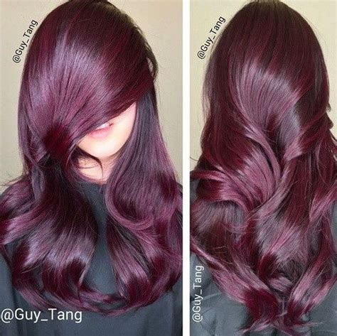 cheveux prune couleur pictures to pin on pinterest les 17 meilleures id 233 es de la cat 233 gorie cheveux violet
