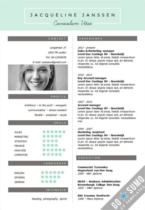 interesting resume formats 28 best cv template images on resume templates