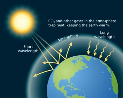 heat l for greenhouse 10 the greenhouse effect facts my