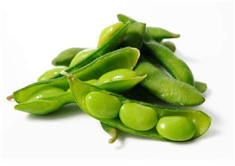 kandungan gizi  manfaat kacang kedelai info kesehatan