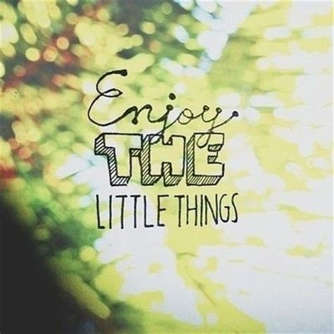 little things enjoy the little things quotes quotesgram