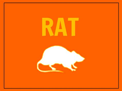 new year 2016 rat horoscope new year 2016 predictions for rat 28 images rat zodiac