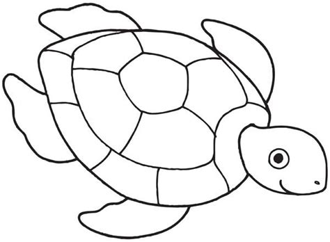 sea turtle drawing coloring page free downloads