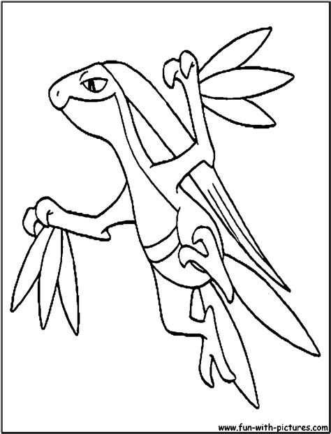 pokemon coloring pages grovyle grovyle coloring page