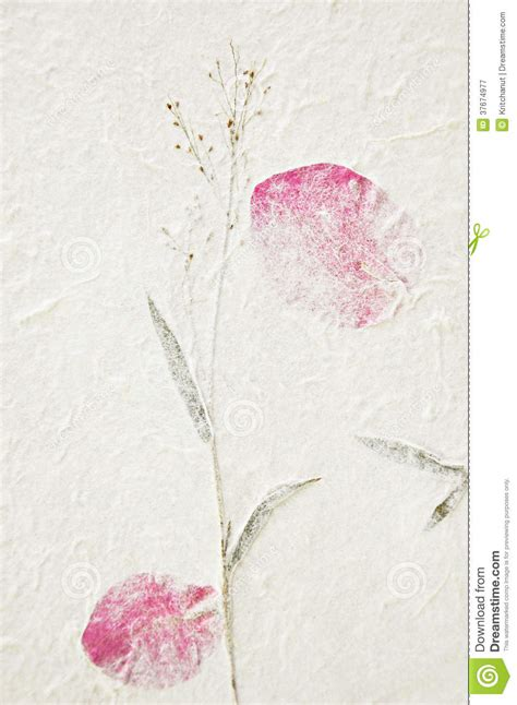 How To Make Mulberry Paper - mulberry paper texture with dried flower royalty free