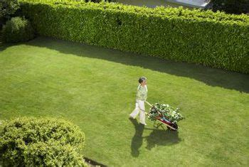 how to reduce highway noise in backyard how to decrease road noise in your backyard home guides