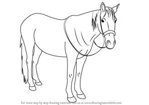 steps on how to draw doodle learn how to draw standing horses step by step