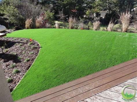 how to grow grass in backyard odd shape lawn in the backyard in novato california