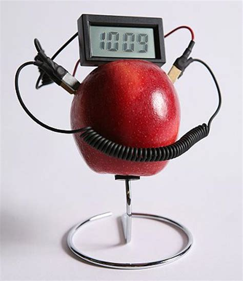 Fruit Powered Clock by The Fruit Powered Clock