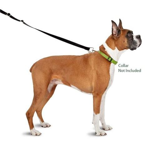 pulls on leash thunderleash a simple no pull solution for your
