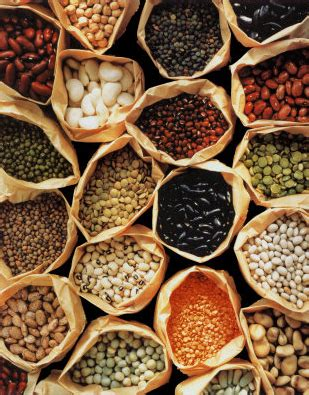 Preserving Seed Diversity   Food Security