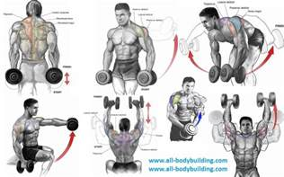 top 6 dumbbell exercises for shoulders all bodybuilding