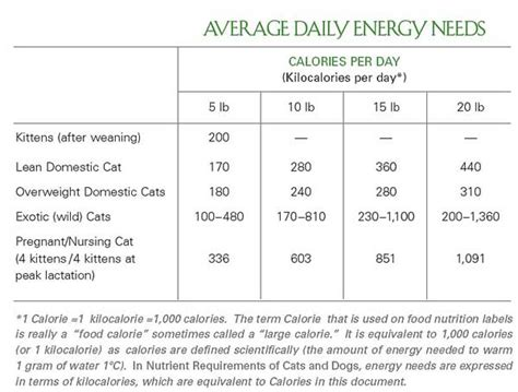 dog nutritional requirements table your cats nutritional requirements the basics party