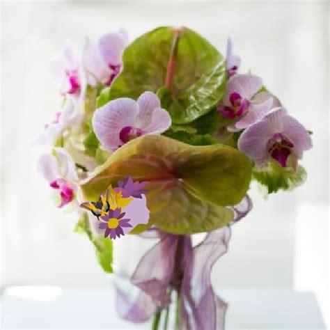 fiori esotici fiori esotici eflora shop