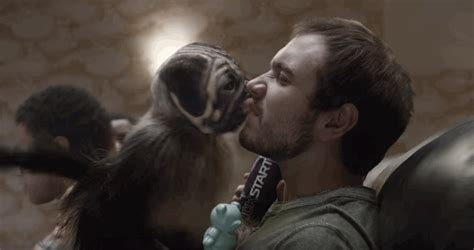 puppy monkey baby mountain dew bowl ad for puppymonkeybaby business insider
