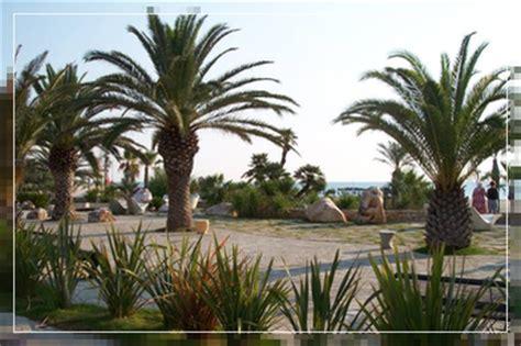 misus porto d ascoli chalet alex san benedetto tronto riviera delle palme