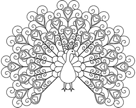 lps peacock coloring pages coloring pages