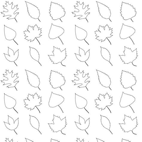 printable traceable leaves traceable leaf patterns coloring home