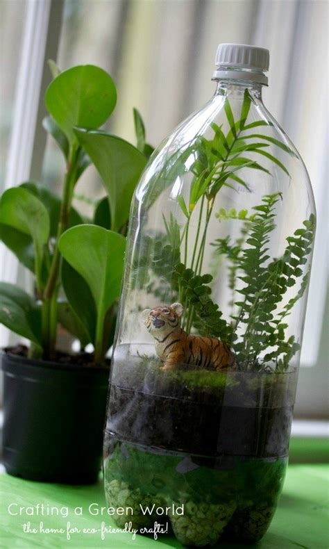Handmade Terrariums - terrarium diy turn an soda bottle into a miniature