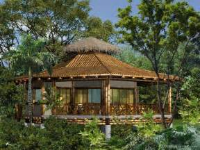 the reality about building with bamboo guadua bamboo