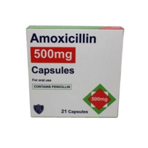 can dogs amoxicillin can i give my amoxicillin can pet dogs take amoxicillin