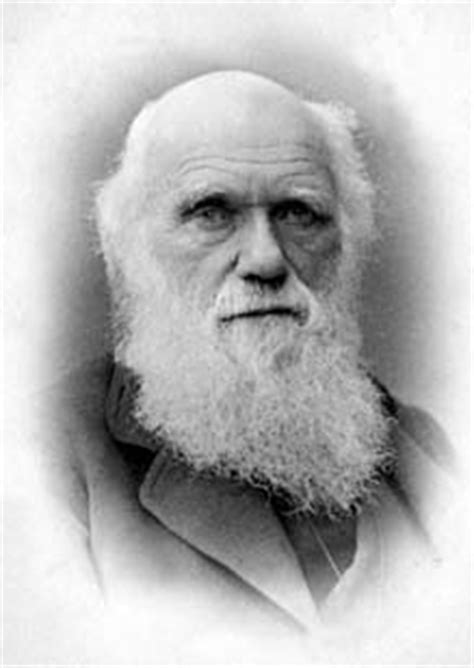 the charles darwin collection digital projects and